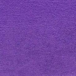 Prince Jr. Purple